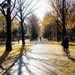 大きな公園と団地群「光が丘パークタウン」散策