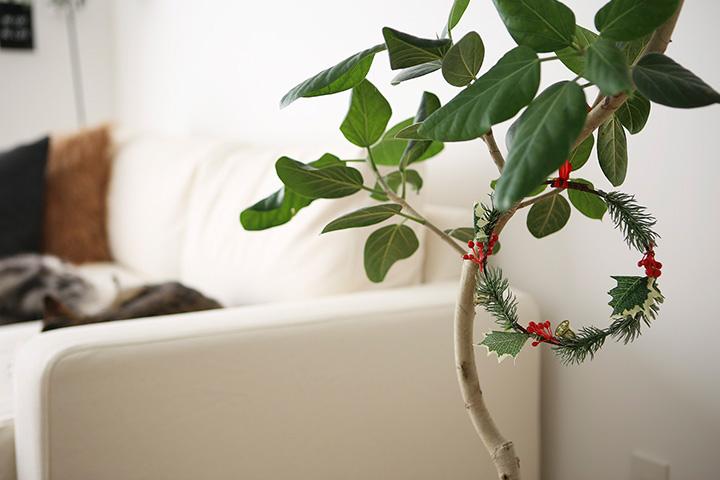 ツリーが飾れない! 鎌倉の家のクリスマス事情
