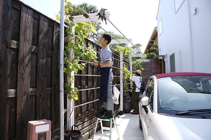 「収穫のできる庭」お手入れはじめ・2018初夏