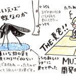 劇的夏チェンAFTER~!その6(ラグと麻畳)