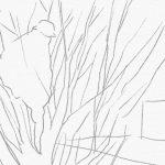 シンボルツリーの選定